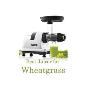 Best-Juicer-for-Wheatgrass